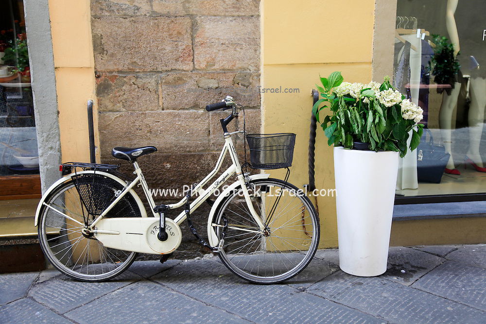 Old style creamed coloured bicycle