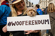 A woman with ther dog and a Wooferendum placard as they join pet owners to take part in an anti Brexit Wooferendum rally on October 07, 2018 in London, England to protest against Britain leaving the European Union.