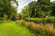The Avon River, Christchurch, Canterbury, South Island, New Zealand
