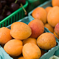 A selection of beautiful, local organic apricots and cherries biodynamically grown by Laura Sabourin at her Feast of Fields farm in Ontario.