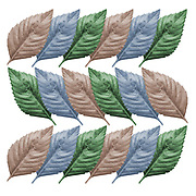 Digitally enhanced image repetitive design of pastel coloured leaves
