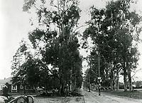 1902 Santa Monica Blvd. near Western Ave.