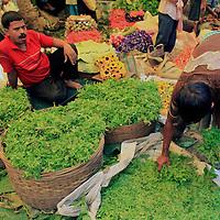 In the flower market in Calcutta, a man gathers fresh green leaves.