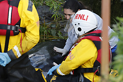 © Licensed to London News Pictures. 10/05/2021. London, UK.  A rescuer places her hand on a young minke whale as it remains trapped in the River Thames at Teddington Lock in south west London. Fire crews and the British Divers Marine Life group worked with a Royal National Lifeboat Institute (RNLI) crew in an effort to save the whale after it got stuck last night . Photo credit: Peter Macdiarmid/LNP