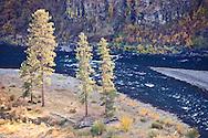 autumn in the Grande Ronde River Canyon, Oregon, USA