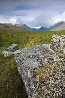 Lichen covered glacial rock with Bielloriehppe mountain behind, Sarek National Park, Laponia World Heritage Site, Sweden