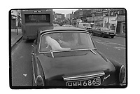 A white cat in a car in the South East of London, 1982. South-East London, 1982