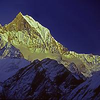 """NEPAL, HIMALAYA. Sunset on 6997-meter Machhapuchhare Peak (""""The Fish Tail""""), viewed from Annapurna Sanctuary."""