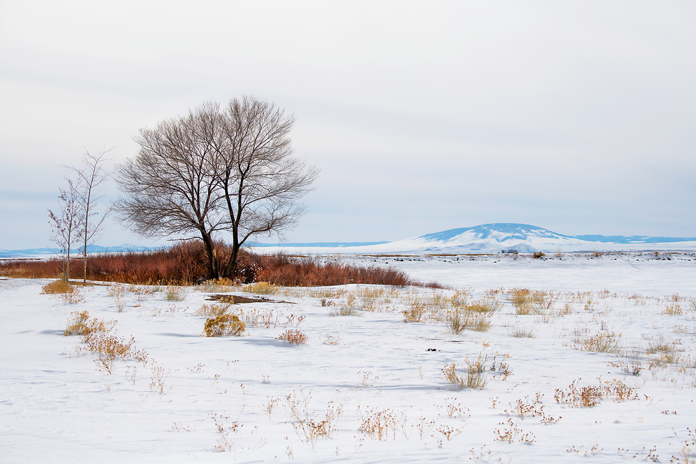 San Luis Valley Colorado Recreation Area in winter