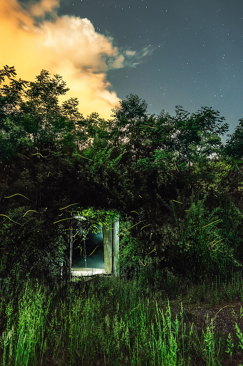 When night descends, fireflies surround one of the old World War II munitions storage bunkers, termed igloo's by the locals, found at the McClintock Wildlife Management Area (TNT area) near Point Pleasant, WV.