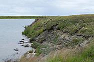 En flodkant med erodering som inte varit där tidigare enligt syskonen Louie Green och Briday Green. <br /> <br /> Nome, Alaska, USA<br /> <br /> Fotograf: Christina Sjögren<br /> <br /> Photographer: Christina Sjogren<br /> Copyright 2018, All Rights Reserved