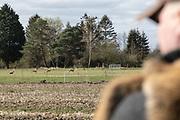 Modern Hunting Series - In Zusammenarbeit mit Jagdjournalistin Anna Lena Kaufmann<br /> <br /> Nutriajagd in den Vierlanden
