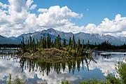 Reflections in wetland ponds along Tok Cutoff (often considered part of the Glenn Highway), north of Slana River bridge (19 miles north of Slana), in Alaska, USA.