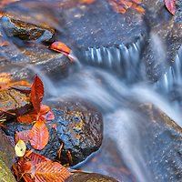 New England fall foliage framing one of the many Indian Hole Brook cascades downstream of Indian Well Falls in Shelton, Connecticut. This brook and Connecticut waterfall is located in Indian Well State Park is only a 25 minute drive from New Haven and rewards with this spectacular New England waterfall. <br /> <br /> Connecticut nature photography images are available as museum quality photography prints, canvas prints, acrylic prints or metal prints. Prints may be framed and matted to the individual liking and decorating needs at:<br /> <br /> https://juergen-roth.pixels.com/featured/indian-hole-brook-juergen-roth.html<br /> <br /> All high resolution Connecticut photography images are available for photo image licensing at www.RothGalleries.com. Please contact me direct with any questions or request. <br /> <br /> Good light and happy photo making!<br /> <br /> My best,<br /> <br /> Juergen<br /> Prints: http://www.rothgalleries.com<br /> Photo Blog: http://whereintheworldisjuergen.blogspot.com<br /> Instagram: https://www.instagram.com/rothgalleries<br /> Twitter: https://twitter.com/naturefineart<br /> Facebook: https://www.facebook.com/naturefineart