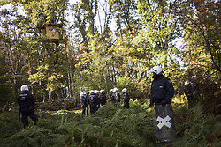 September 29, 2018 - Kerpen, Nordrhein-Westfalen, Germany - Eviction of the occupation of the Hambacher Forst at 28th september 2018 (Credit Image: © Jannis Grosse/ZUMA Wire)