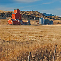 A grain elevator and silos stand amid fallow wheat fields in the Gallatin Valley, north of Bozeman.