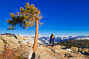 Backcountry skier Sierra peaks from the summit of Sentinel Dome, Yosemite National Park, California