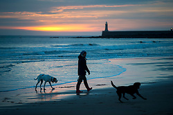 © Licensed to London News Pictures. 25/12/2015. Tynemouth, UK. A dog walker at first light before Sunrise on Christmas day on Longhands beach in Tynemouth, north east England. Photo credit: Ben Cawthra/LNP