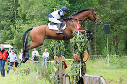 Harwood Louise, (GBR), Whitson   <br /> Cross country - CCI4* Luhmuhlen 2016<br /> © Hippo Foto - Jon Stroud<br /> 18/06/16