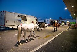 Departure horses for WEG Tryon<br /> Departure horses from Liege Airport<br /> FEI World Equestrian Games™ Tryon 2018<br /> © Hippo Foto - Dirk Caremans<br /> 02/09/2018