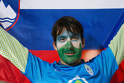 Fans of Slovenia after the football match between National teams of Slovenia and Cyprus in 3rd Round of Group E of FIFA World Cup 2014 Qualification on October 12, 2012 in Stadium Ljudski vrt, Maribor, Slovenia. Slovenia defeated Cyprus 2-1. (Photo By Vid Ponikvar / Sportida)