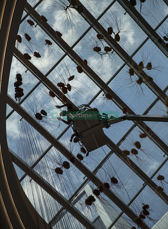 July 27, 2017 - Bloomington, MN, USA - Internationally acclaimed artist HOTTEA (Eric Rieger) (silhouetted) dropped strands of yarn hanging from the ceiling as he installed a yarn installation with assistant Fabricio Robles at the Mall of America in Bloomington, Minn., on July 27, 2017. The installation is in the atrium and the public can watch him install it over the next few days. The bags hanging from the ceiling are full of different color and length yarn that they will individually drop and hang three stories ] RENEE JONES SCHNEIDER Â¥ renee.jones@startribune.com (Credit Image: © Renee Jones Schneider/Minneapolis Star Tribune via ZUMA Wire)