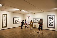 Japon, île de Honshu, région de Shizuoka, Atami,  MOA, le Musée d'art moderne // Japan, Honshu, Shizuoka, Atami, MOA, the Museum of Art