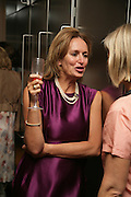 Caroline Michel, Party hosted by Sir Richard and Lady Ruth Rogers at their house in Chelsea  to celebrate the extraordinary achievement of completing this year's Pavilion  by Olafur Eliasson and Kjetil Thorsenat at the Serpentine.  13 September 2007. -DO NOT ARCHIVE-© Copyright Photograph by Dafydd Jones. 248 Clapham Rd. London SW9 0PZ. Tel 0207 820 0771. www.dafjones.com.