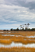 Storm clouds advance over the marsh of the Eastern Shore of Virginia National Wildlife Refuge in Virginia. The refuge is at the southern tip of the Delmarva Peninsula, a narrow peninsula bordered by Chesapeake Bay and the Atlantic Ocean.