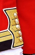 Guardsman London, UK