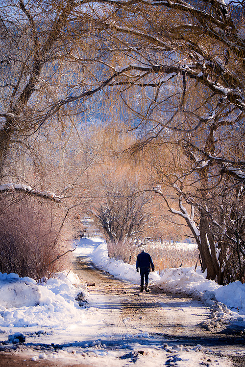 Winter walk up the hill to Arroyo Seco, New Mexico