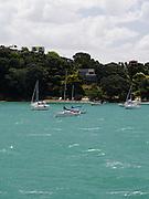 View of sailboats moored in Putaki Bay, Waiheke Island, New Zealand.