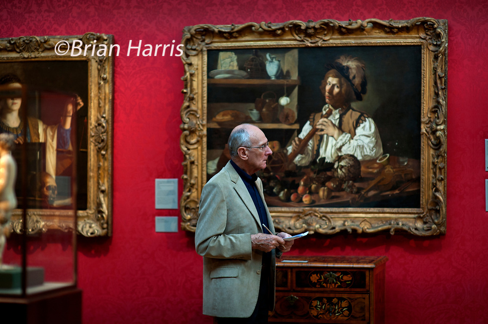 John Carey Author and critic visits the Ashmolean Museum, Oxford, England, for Intelligent Life Magazine. Photographed by Brian Harris 11 October 2011.<br /> Looking at 'Interior with a still life and young man holding a recorder ' by Francesco Buoneri called Cecco del Caravaggio.