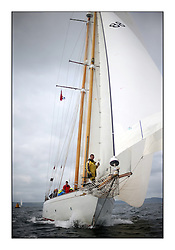 The final day of racing of the Fife Regatta on the King's Course North of Great Cumbrae<br /> <br /> Astor, Richard Straman, USA, Schooner, Wm Fife 3rd, 1923<br /> <br /> <br /> * The William Fife designed Yachts return to the birthplace of these historic yachts, the Scotland's pre-eminent yacht designer and builder for the 4th Fife Regatta on the Clyde 28th June–5th July 2013<br /> <br /> More information is available on the website: www.fiferegatta.com