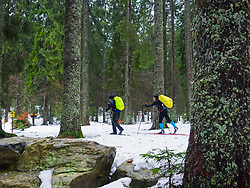 Two men cross - country skiing in the black forest