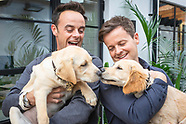 Ant & Dec with puppies