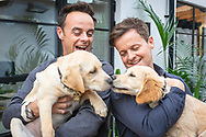 """EMBARGOED IMAGE - AVAILABLE FOR PUBLICATION FROM 00.01 on Thursday 17th October; 2019.<br /> ##Editorial free to use photo##<br /> <br /> Puppy Love!  Ant and Dec hold guide dog puppies Ant and Dec as they say hello:<br /> <br /> To mark this year's Guide Dogs Appeal, Pups to Partnerships, Ant and Dec have had two guide dog pups named after them, an adorable Yellow Labrador puppy has been named after Ant while the playful Golden Retriever has been named after Dec. Ant and Dec are supporting this year's Guide Dogs Appeal which follows the progress of a group of seven puppies. Throughout October, the charity is sharing the journey of the puppies as they progress to become life-changing guide dogs.  <br />  <br /> Speaking of the partnership, Ant says: """"We're so proud to be part of the Pups to Partnerships campaign; not only do we get to meet these adorable puppies but we also get to hear about the great work that Guide Dogs does."""" Dec adds: """"These puppies will go on to change lives and give two people living with sight loss the independence and freedom we take for granted; we can't wait to see how these puppies progress."""" <br />  <br /> The Guide Dogs Pups to Partnerships Appeal is taking place from the 1st to the 31st October 2019. For more information on how to get involved, visit: www.guidedogs.org.uk/appeal<br /> <br /> Picture date: Tuesday October 15; 2019.<br /> Photograph by Christopher Ison for Guide Dogs ©<br /> 07544044177<br /> chris@christopherison.com<br /> www.christopherison.com"""
