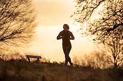© Licensed to London News Pictures. 18/01/2019. London, UK. A jogger runs in Richmond Park at first light as freezing temperatures and snow hit parts of the UK. Photo credit: Peter Macdiarmid/LNP