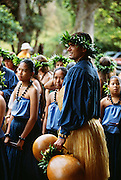 Hula Dancers, Kauai, Hawaii.Hula Dancers, Kauai, Hawaii, halau, polynesian, woman..
