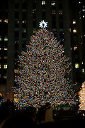 The 2011 Christmas tree just after the lighting at 8:58 PM.
