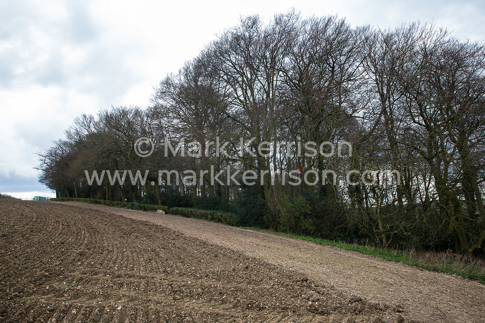 Wendover, UK. 9th April, 2021. A section of Jones Hill Wood, ancient woodland said to have inspired Roald Dahl, is pictured during tree felling operations for the HS2 high-speed rail link. Tree felling work began this week, in spite of the presence of resting places and/or breeding sites for pipistrelle, barbastelle, noctule, brown long-eared and natterer's bats, following the issue by Natural England of a bat licence to HS2's contractors on 30th March.