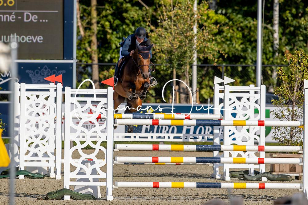 De Bock Dries, BEL, Tresor Van De Vlierbeek Z<br /> Belgian Championship 6 years old horses<br /> SenTower Park - Opglabbeek 2020<br /> © Hippo Foto - Dirk Caremans<br />  13/09/2020