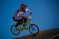 #949 (CAMERON Matthew) NZL at the 2013 UCI BMX Supercross World Cup in Chula Vista