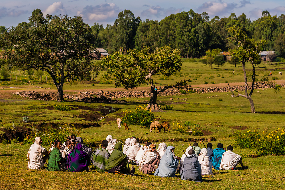 Men talking while their animals are grazing, South Gonder, Amhara region, Ethiopia.