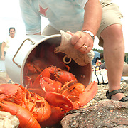 Cooked Maine Lobsters hit the beach