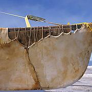 "Alaska,  Umiag boat, used by the Inuit natives, made of seal skin called """"Umiag"""". Barrow, Alaska."