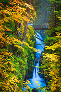 """Sol Duc Falls in Olympic National Park, in autumn.  The name Sol Duc means """"magic waters"""". The Sol Duc River is divided into 3 or 4 separate streams (depending on flow) by an irregular rocky ledge. The water drops about 25 feet over the ledge into a tight cleft, making a 90 degree angle turn. The river passes beneath a footbridge, then drops about 10 feet into a deep teal pool."""