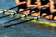 Detail of rowers in action.