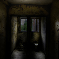 derelict toilet in Laybourne Grange mental asylum nurses accommodation block