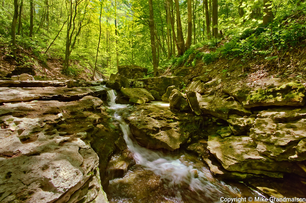 Sixteen Mile Creek. at Louth Falls. Carolinian Forest in spring.<br />Jordan<br />Ontario<br />Canada